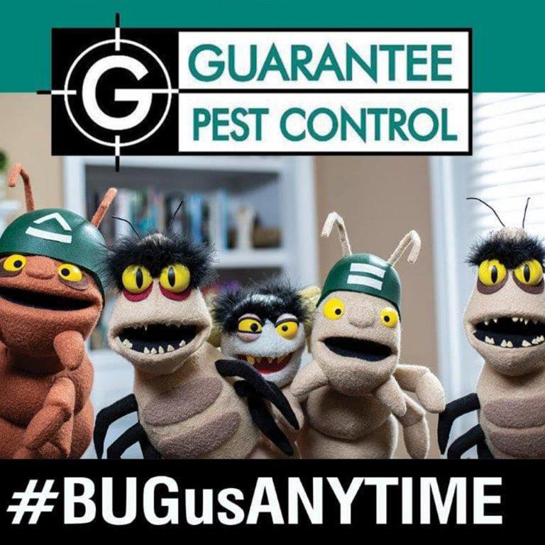 Guarantee-Pest1
